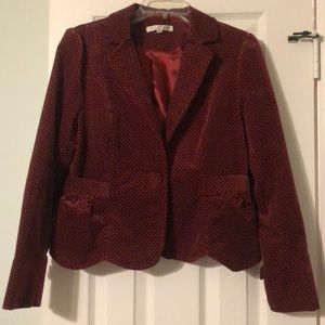 Velvet Scalloped Hem Blazer